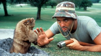 Test Your 'Caddyshack' Knowledge With This Quiz