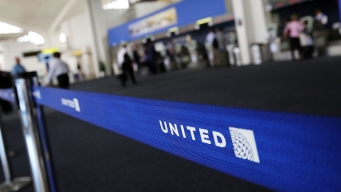 United Joins Delta in Tightening Rules for Comfort Animals