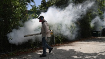 Florida's 1st Zika Outbreak Almost Over, Officials Say