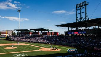 Cubs Smash MLB Spring Training Attendance Records