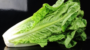E. Coli Outbreak Linked to Romaine Lettuce Has Spread to 22 States