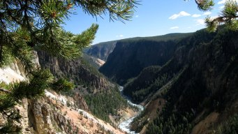 Yellowstone Park Worker Dies in Fall From Cliff