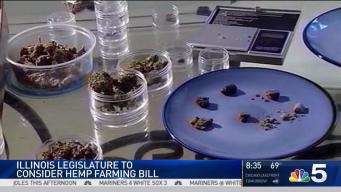 Hemp Bill May Benefit Medical Marijuana Industry