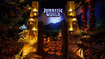 Field Museum Opens New 'Jurassic World' Exhibit This Weekend