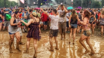 Grant Park Suffers More Damage Than Lolla 2013
