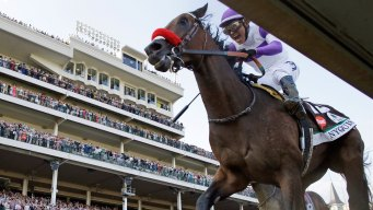 Derby Winner Nyquist Draws No. 3 Post as Preakness Favorite