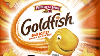 Pepperidge Farm Recalls 4 Varieties of Goldfish Crackers