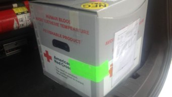'Box of Blood' Found in the Middle of Wisconsin Road