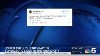 United Airlines Sends ScHoolboy Q's Dog to Wrong City