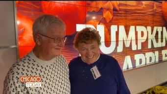 'Chicago Today' Hosts Bring Special Guests to Work
