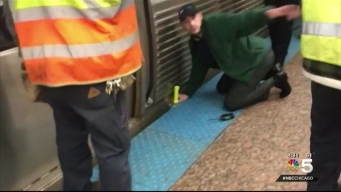 Passenger Rescues Woman Hit by CTA Red Line Train