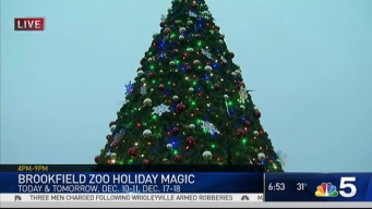 Brookefield Zoo Brings Holidays to Life With Ferdinand the Talking Douglas Fir Tree