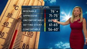 Chicago Weather: Thursday Forecast