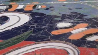 Young Adults Bring Marine Mosaics to Life in Oak Park