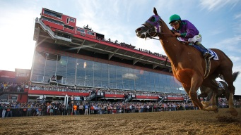California Chrome Cleared to Wear Nasal Strip at Belmont
