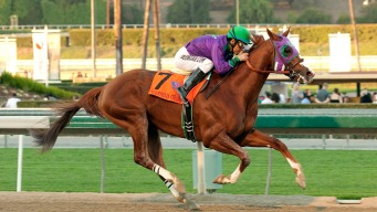 California Chrome Leads Derby Hopefuls