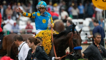 Belmont Stakes Field Reduced to 8 Horses