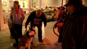 Salvation Army Bell-Ringer's Beloved Dog Banned