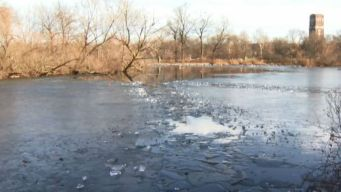 Man Dies Trying to Save Dog in McKinley Park Lagoon
