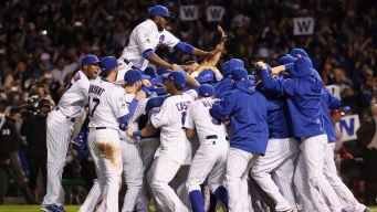 Chicago Cubs are Betting Favorites for 2016 World Series