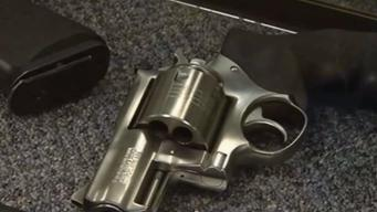 Couple Sues to Keep Guns at Home Daycare
