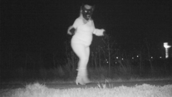 Police Capture 'Weirdos' Instead of Wildlife on Trail Camera
