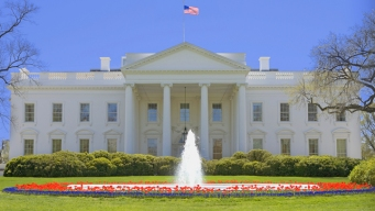 Four Local Startups Honored by White House
