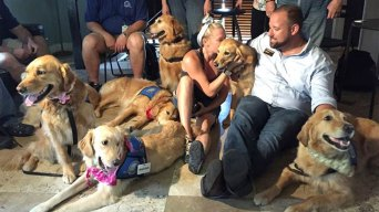 Therapy Dogs Meet Orlando Victims, Family Members