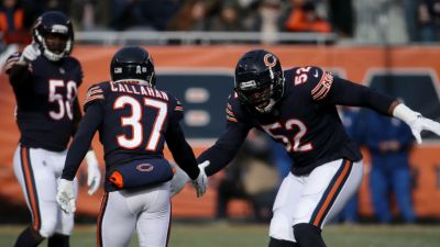 Lions vs. Bears: Grizzly Details