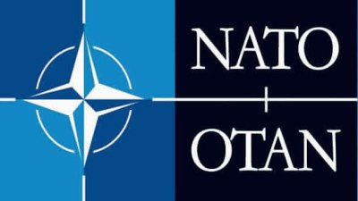 Security Consultants: NATO Fears Overblown