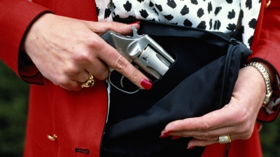 Compromise Reached on Concealed Carry in Illinois