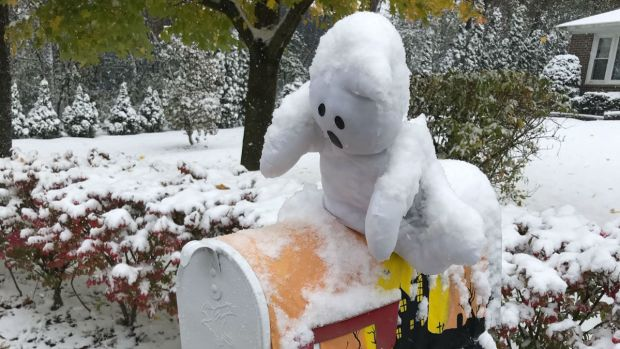 Wicked Weather: Your Halloween Snow Photos