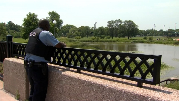 Crews Search Lagoon After Alligator Sighting Reported