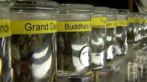 Chicago Medical Marijuana Clinic Inundated With Calls