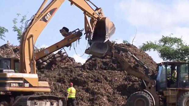 [NATL-NY] Puerto Rico Turning Maria Debris Into Mulch