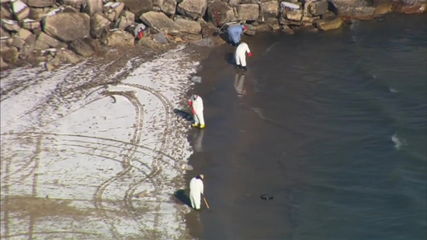 [CHI] Raw: Oil Spills Into Lake Michigan After Refinery Malfunction