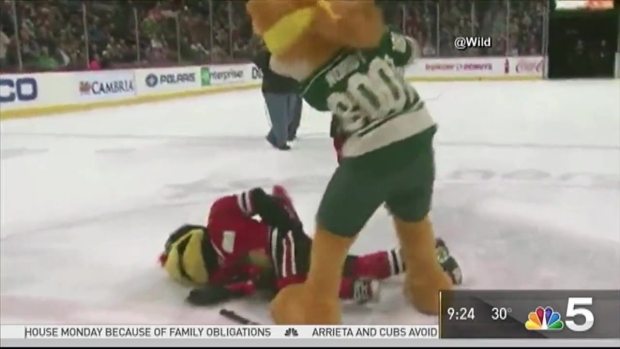 Wild Apologize Over Mascot Beating Skit