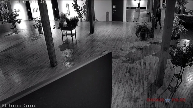 [CHI] Police Release Video of Bridgeport Art Center Burglary