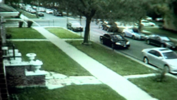 [CHI] Video Shows Postal Worker in Hours Before She Was Reported Missing