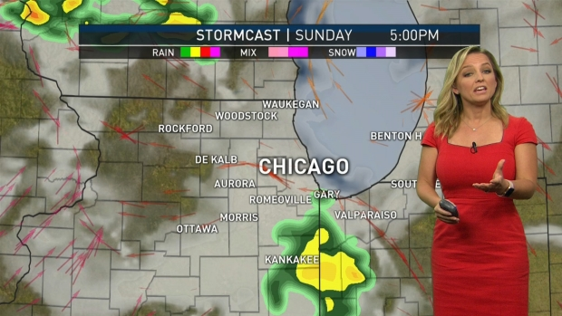 Chicago Pride Parade Canceled Due to Weather, Police Confirm