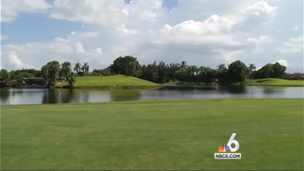 [MI] Man Bitten by Gator While Diving for Golf Balls