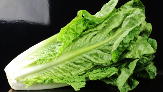 How to Know If Your Romaine Lettuce Is Safe to Eat