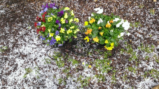 Your April Hail Photos