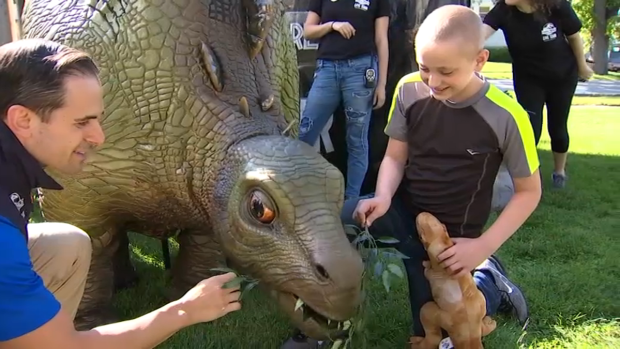 Illinois Boy Battling Cancer Is Surprised With Jurassic Bedroom