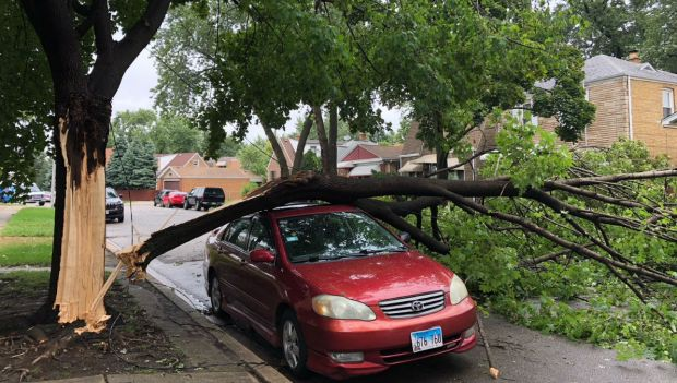 Storm Damages Across the Chicago Area