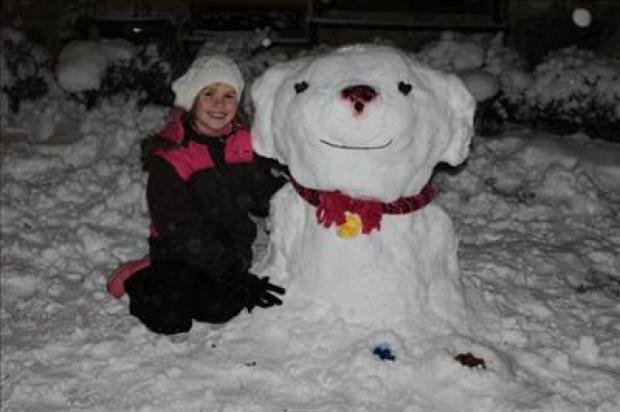 Editors' Picks: Snow Creations