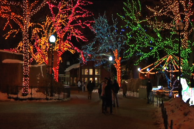 [CHI] Tour Lincoln Park Zoo's  ZooLights