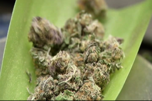 [CHI] Chicago Gets New Pot Policy