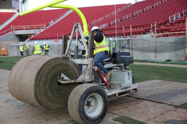 Crews Install Field at 49ers' Levi's Stadium