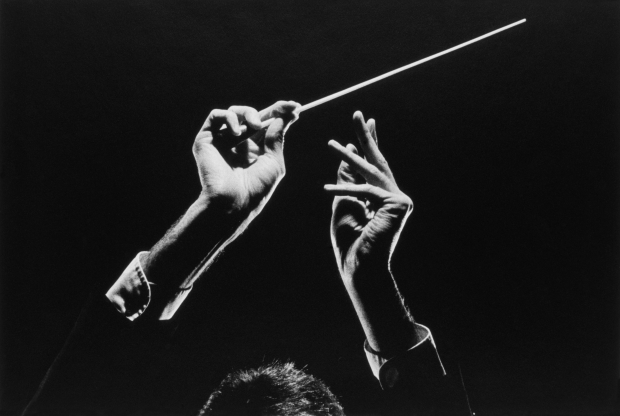 [CHI] Why Do Orchestras Need Conductors?
